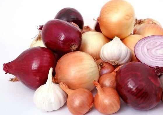 Onion-Zwiebel-Flashcard-allaboutdeutsch