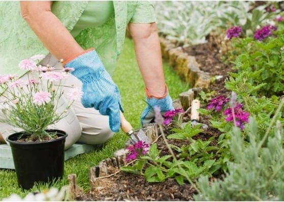 gardening-gartenbau-flashcards-allaboutdeutsch