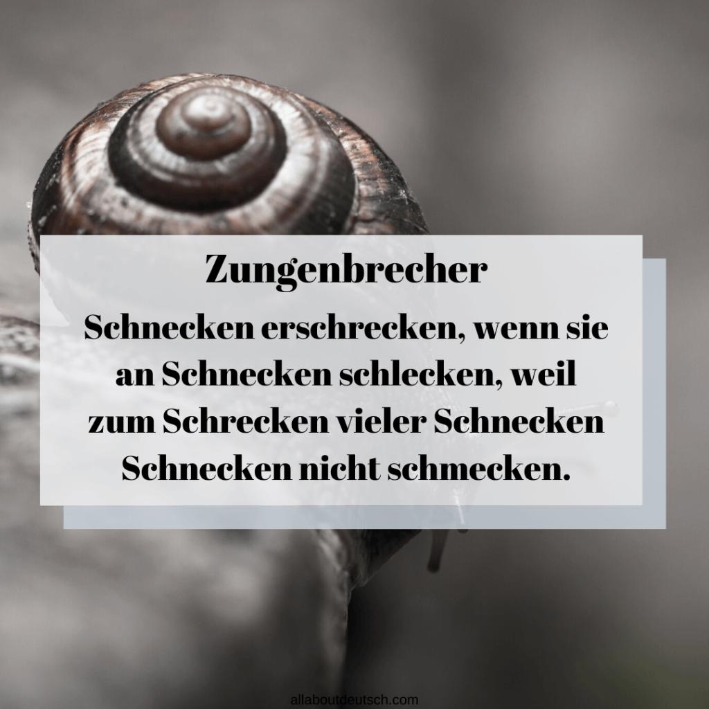 Schnecken erschrecken-German-Tongue-Twister